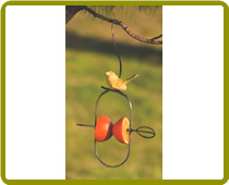 Fruit Spear Bird Feeder With Ceramic Bird