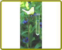 Ceramic Yellow Bird Rain Gauge