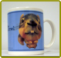 """The Squirrel"" Mug"