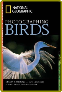 Photographing Birds