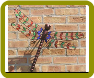 Stained Glass Metal Dragonfly