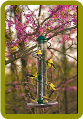 Green Spiral Sunflower Feeder 17 in.