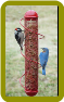 Red Peanut Feeder