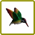 Rainbow Hummingbird Fly Thru Window Magnet