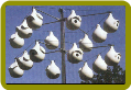 Gourd Rack – Gourds & Pole not included
