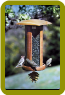 Songbird Lantern Big & Tall
