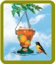 Deluxe Hand Painted Oriole Feeder
