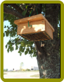Cedar Upside Down Suet Box