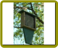 Recycled Suet Feeder with Tail Prop