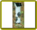 Birch Log Bird Feeder – Thistle Seed