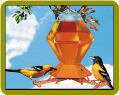 Deluxe Oriole Bird Feeder