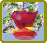 Red Bird Hummingbird Feeder
