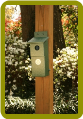 Bluebird Nesting Box-Hunter Green